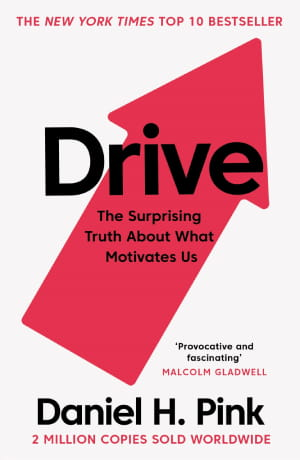 Drive_The Surprising Truth About What Motivates Us